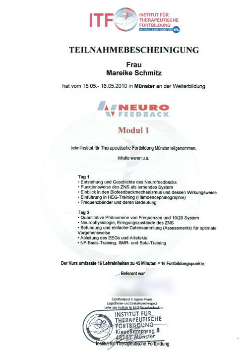 Neurofeedback Modul 1 - Zum Vergrößern bitte auf das Bild klicken